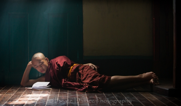 monk studying new web (1 of 1)